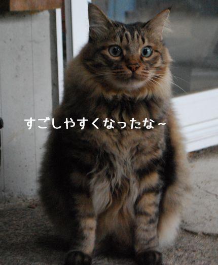 1_20100925123908.jpg