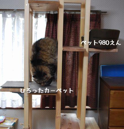 2_20101006065133.jpg