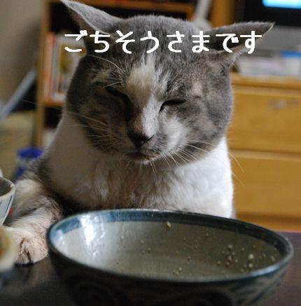 2_20101012081623.jpg