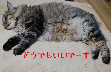 3_20100922090054.jpg