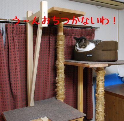 4_20101009094408.jpg