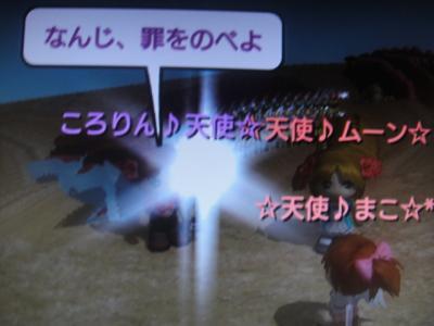 DSC01729_convert_20100603040102.jpg