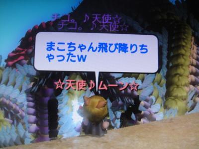 DSC01817_convert_20100621200100.jpg
