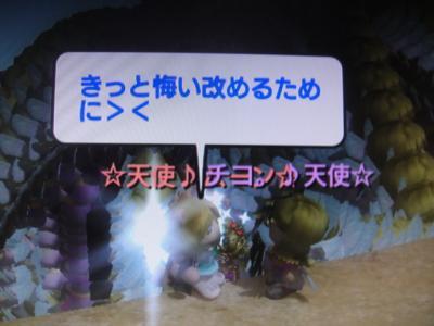 DSC01818_convert_20100621200136.jpg