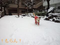 120229雪~~~♪-4