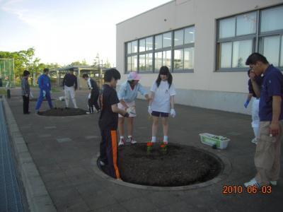 平成22年6月3日  八中花植え作業 007