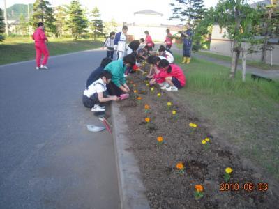 平成22年6月3日  八中花植え作業 008