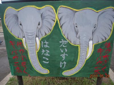 平成22年6月1日 大森山動物園 006