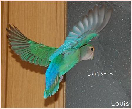 2010061604.jpg