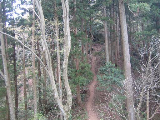 コピー登山6 ~ IMG_0426