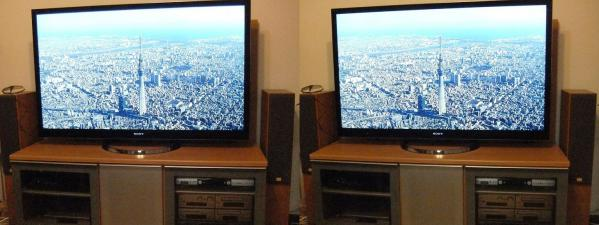 新テレビ(交差法)