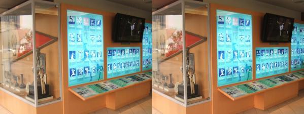 南海ホークス メモリアルギャラリー 展示物①(交差法)
