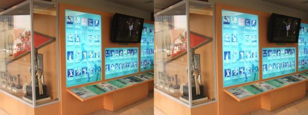 南海ホークス メモリアルギャラリー 展示物①(平行法)