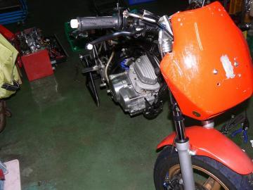 x-P1260104.jpg