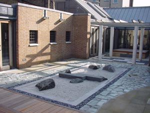 SOAS-roof-gdn-in-the-sun.jpg