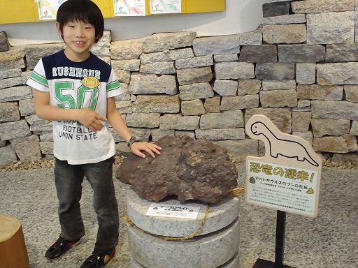 ウンコの化石