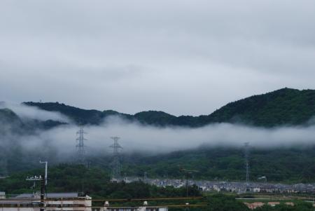 4663朝靄
