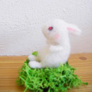 20130111ウサギ