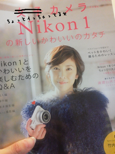 NEC_0213 - コピー