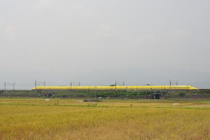 IMGP2091(10M-1-2).jpg