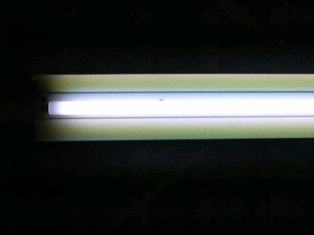 明るい3波長形