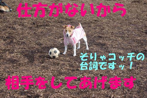 サッカーしようよ