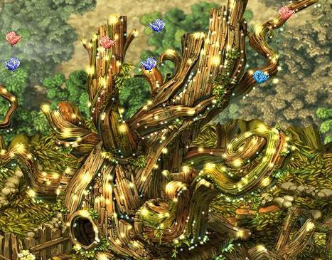 美しい蝶の木