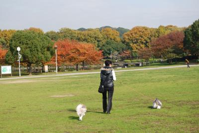 大仙公園1