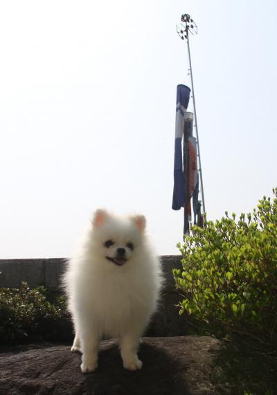 永澄(エース)