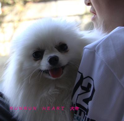 微笑み椿季(つばき)