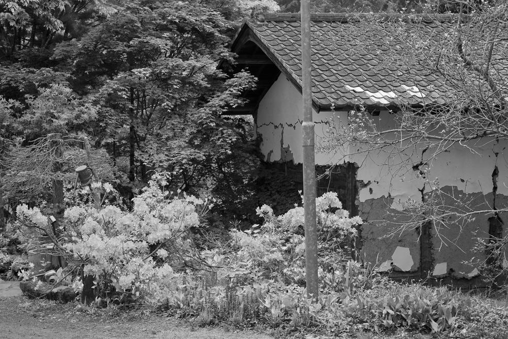 川場村11.06.05-04