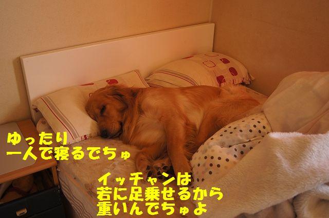 0003_20130226203412.jpg