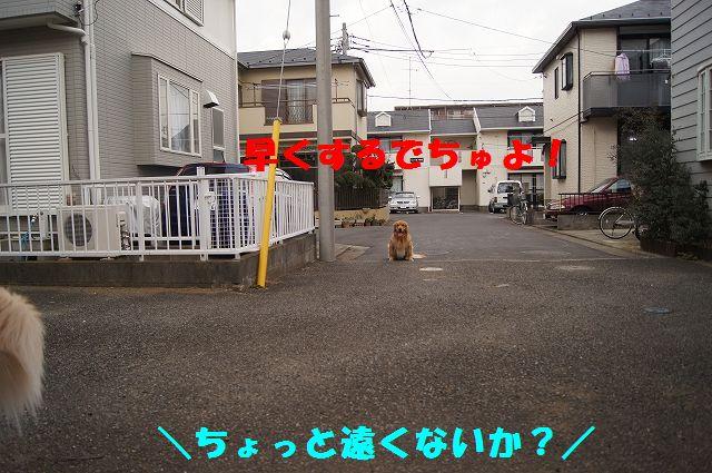 0005_20130218120740.jpg