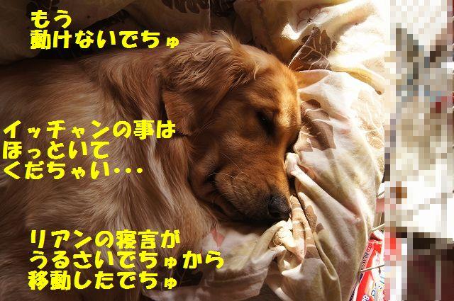 0005_20130226203414.jpg