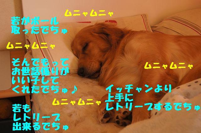 0006_20130226203424.jpg