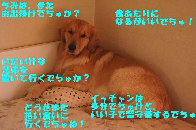 001_20130218071225.jpg