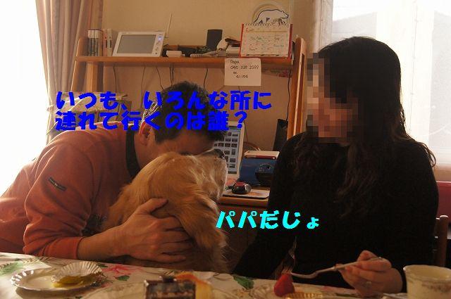 007_20130218071246.jpg