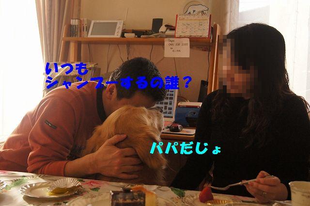 008_20130218071247.jpg