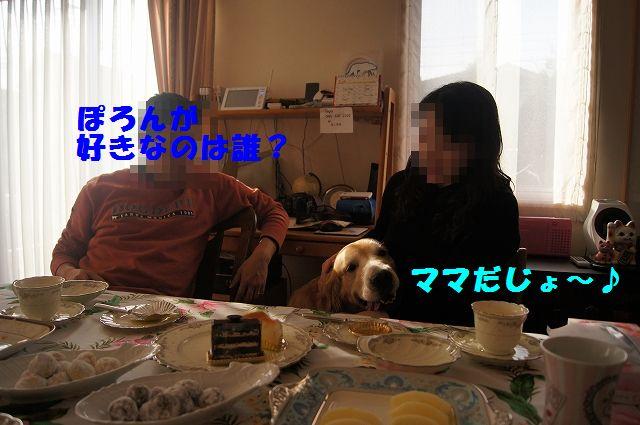 009_20130218071248.jpg