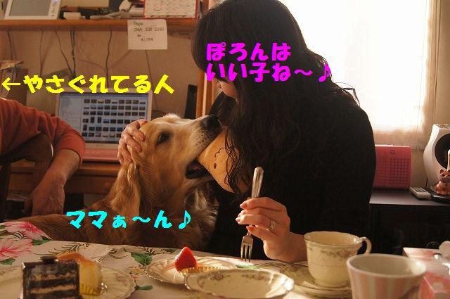 011_20130218071249.jpg