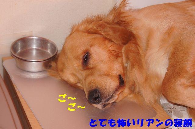 014_20130218071307.jpg