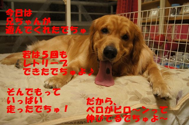 01_20130301185520.jpg