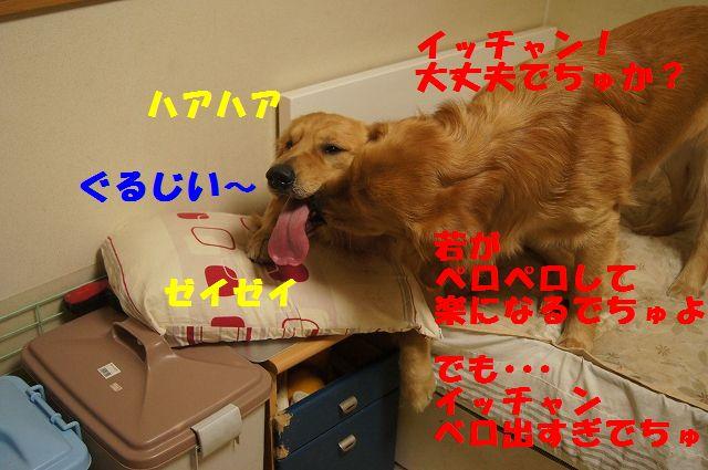 03_20130301185522.jpg