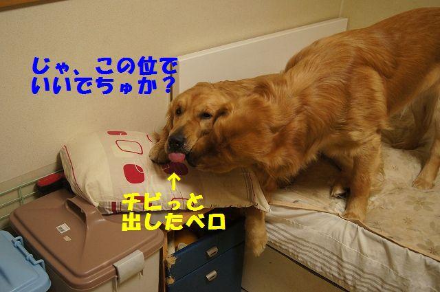 04_20130301185523.jpg