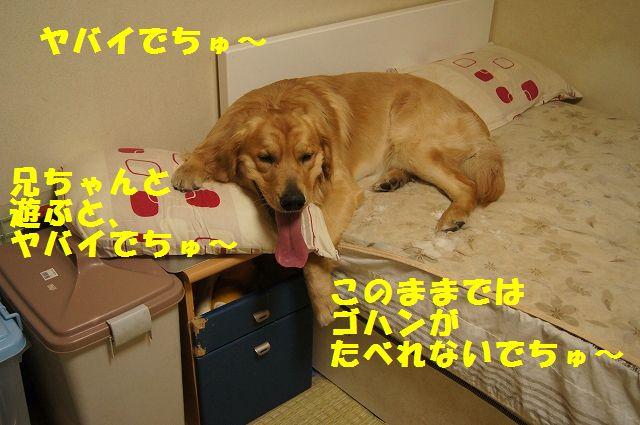 07_20130301185540.jpg