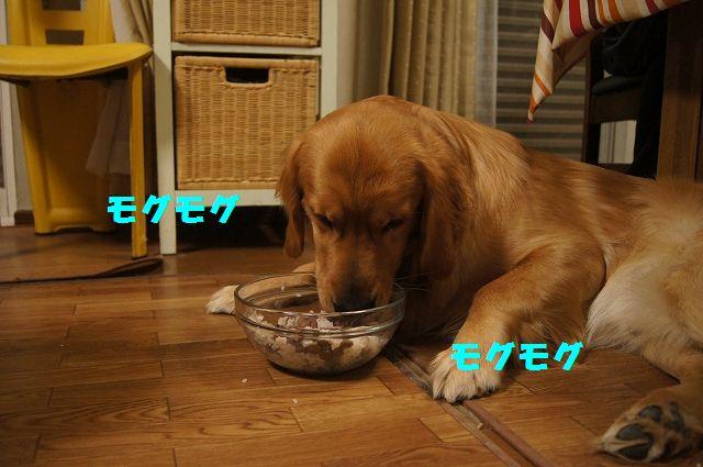 10_20130225223046.jpg