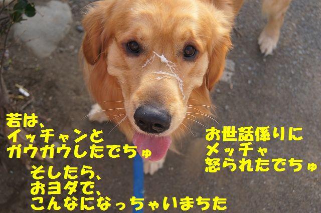 10_20130307013411.jpg