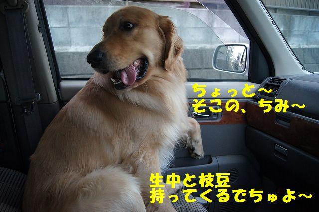 10_20130308223313.jpg