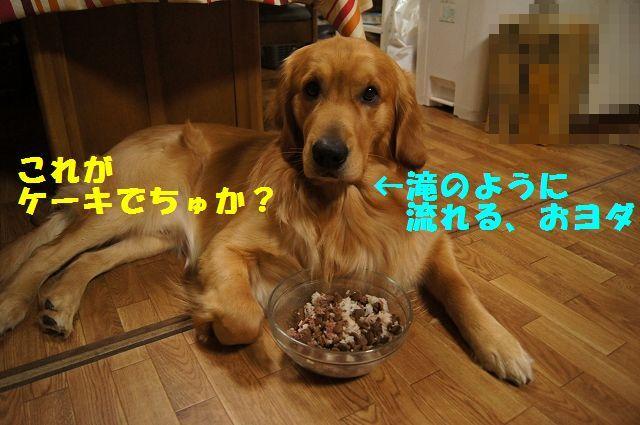 10_20130309064058.jpg