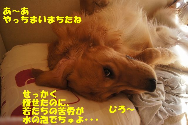 10_20130314231639.jpg